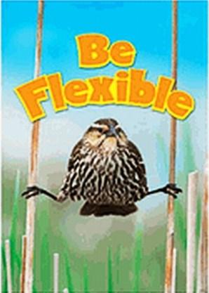 FlexibilityPoster